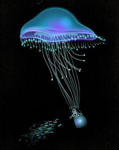 Medusa by Tang Yau Hoong