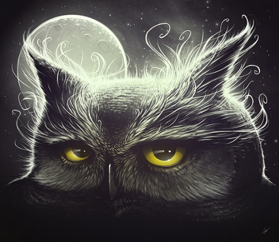 Owl_and_The_Moon